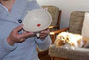 猫型陶器の猫よしオリジナルのお皿。