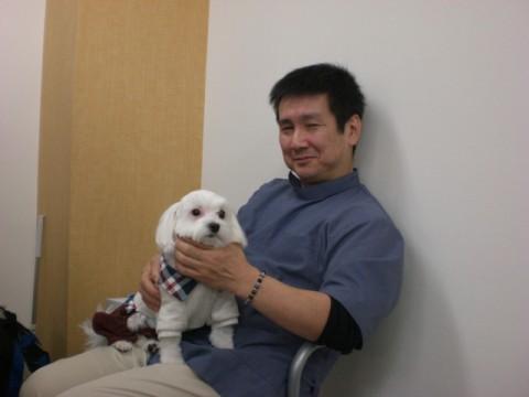 マルチーズ好きな講師の松本先生、受講生同伴犬の姫ちゃんを抱っこしてご満悦♪