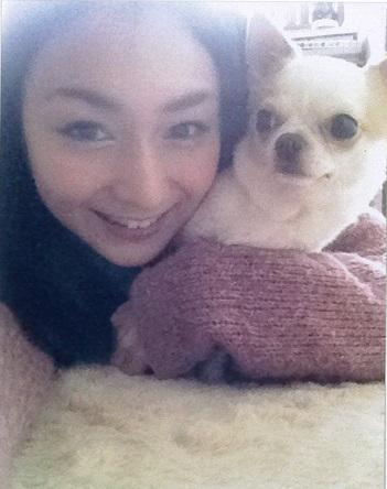 愛犬のリリイちゃん (チワワ7歳)