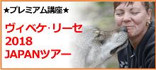 ヴィベケ・リーセ2018 JAPANツアー