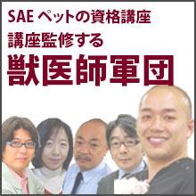 SAEペットの資格講座を監修する獣医師軍団